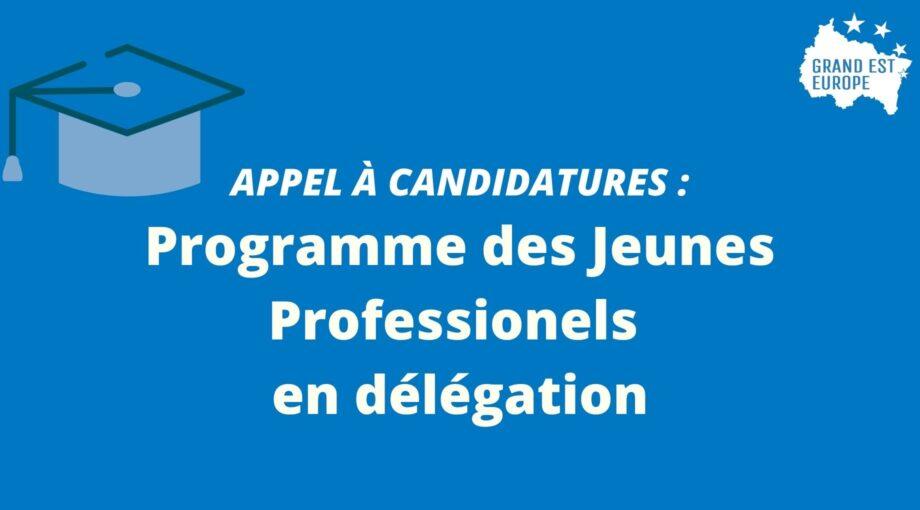 Appel à manifestation d'intérets pour le Programme des Jeunes Professionels en délégation (2)