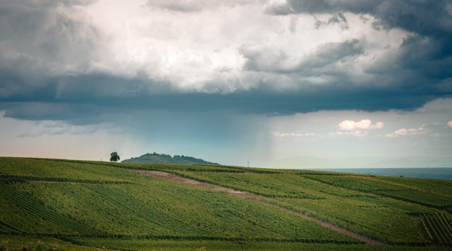 Photo by Hugues de BUYER-MIMEURE on Unsplash